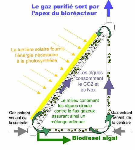 Principe de fonctionnement du bioreacteur