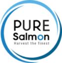saumon d'élevage