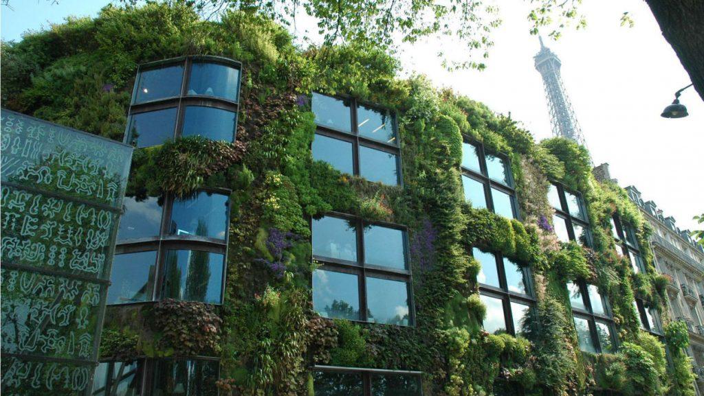 toitures et façades végétalisées