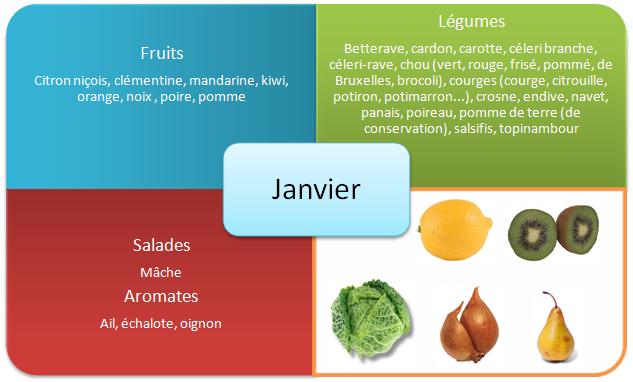 Les fruits et légumes d'hiver - Janvier