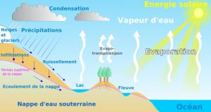 Le cycle de vie de l'eau