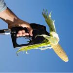 biocarburants