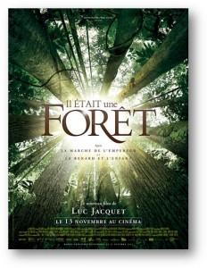 l'affiche du film Il était une forêt