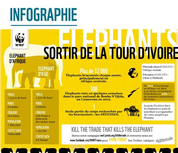 info_tour_ivoire