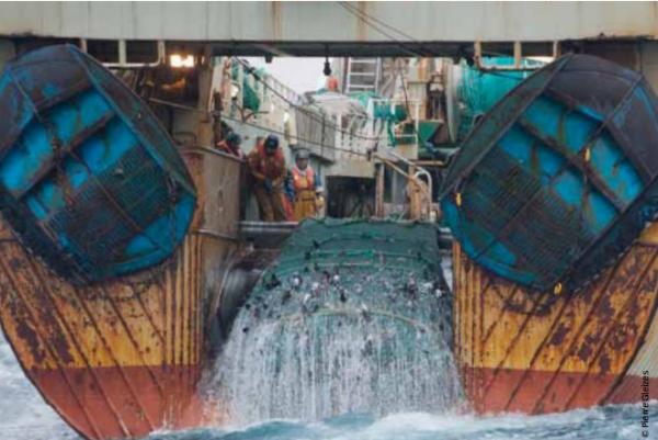 surpêche mondiale