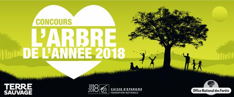 PARTICIPEZ AU CONCOURS DE L'ARBRE DE L'ANNÉE 2018