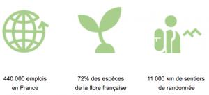 les forêt emploient beaucoup de gens en France et cela pourrait être encore plus !