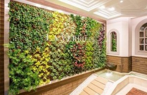 Mur végétal d'intérieur, existe aussi en extérieur (comme celui du musée du quai Branly à Paris)