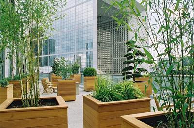 balcon terrasse végétalisé
