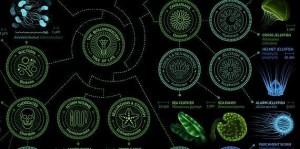 La bioluminescence est la production et l'émission de lumière par certains organismes vivants